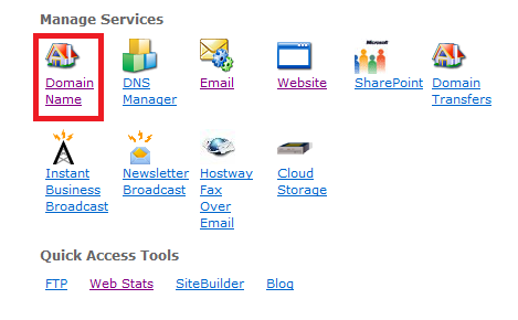 ManageServices-domain_name.png